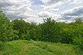 71-103-0049 Kaniv Moskovka SAM 8739.jpg
