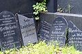 9757viki Cmentarz Żydowski na Ślężnej. Barbara Maliszewska.jpg