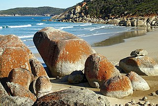 Wilsons Promontory National Park Protected area in Victoria, Australia