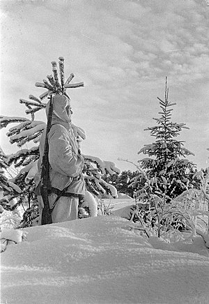 Battle of Salla (1939) - A Finnish soldier on guard near Kemijärvi, 11 February 1940.