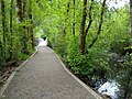 A trail in the Tacoma Nature Center.jpg