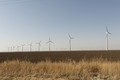 A wind-turbine farm near the city of Snyder in Scurry County, Texas LCCN2014631781.tif