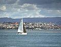 Abaconda boat tauranga qfse sail.jpg