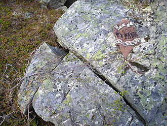 Weathering - A rock in Abisko, Sweden fractured along existing joints possibly by frost weathering or thermal stress