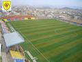 Abu walad stadium.png