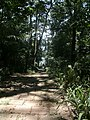 Acesso a Represa - Parque Guarapiranga - Av. Guarapiranga 505 - panoramio.jpg