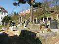 Adamov (old cemetery)3.JPG