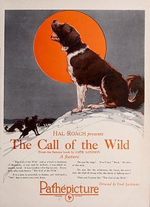 Advertisement for 1923 silent film The Call of the Wild.jpg