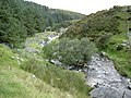 Afon Anafon - geograph.org.uk - 935086.jpg