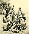 African invertebrates - a journal of biodiversity research (1906-1908) (17317350344).jpg