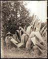 Agave mirabilis, Las Vigas, Mexico - 1903 - MoBOT - GPN 1982-0457.jpg