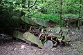 Agricultural plough Hatfield Broad Oak Essex England.jpg