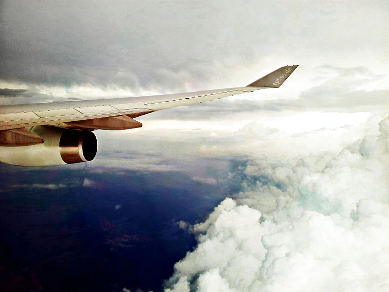 File:Airplane Flight Wing flying to Travel on Vacation.jpg