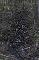 Akmeņupītes ūdenskritums, 14.05.2017. - 26618884789.jpg