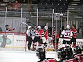 Albany Devils vs. Portland Pirates - December 28, 2013 (11622769046).jpg
