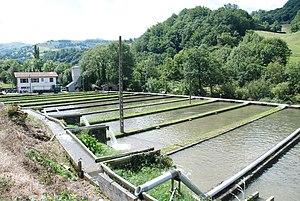 Aldudes - Fish Farm