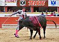 Alejandro Amaya (5055984261).jpg