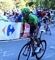 Alejandro Valverde (2) - Vuelta a España 2013.jpg