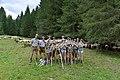 Almabtrieb der Schafe 2014 in Schoppernau 06.JPG