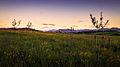 Alpen am Horizont.jpg
