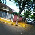 Amarelo - panoramio (1).jpg