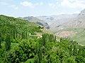 Amir2008m-20130508T121347-r4xa925.jpeg