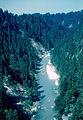 Ammer River (2974508984).jpg