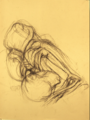 Anatomical study on sepia paper by Christopher Willard.png