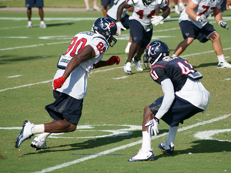 2010 Houston Texans season