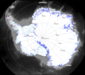 Antarctic blueice hg.png