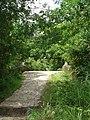 Antiguo puente de Hampolol (Camino Real). - panoramio.jpg