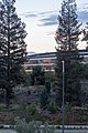 Apple Park - October 2018 - 8794.jpg