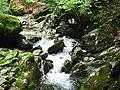 Apriltzi, Bulgaria - panoramio (53).jpg