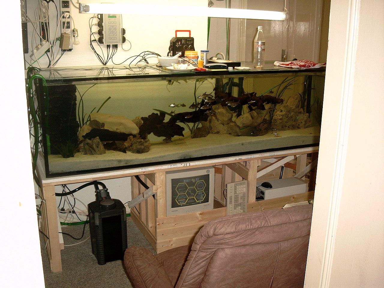 file aquarium wikimedia commons. Black Bedroom Furniture Sets. Home Design Ideas