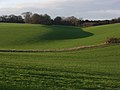 Arable farmland on the Lambourn Downs - geograph.org.uk - 314010.jpg