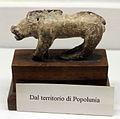 Archeologico, bronzetti etruschi, cinghiale, dalla zona di vetulonia.JPG