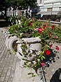 Archiepiscopal Palace courtyard flower box in Eger, 2016 Hungary.jpg