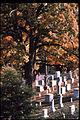 Arlington House (The Robert E. Lee Memorial) ARHO3235.jpg