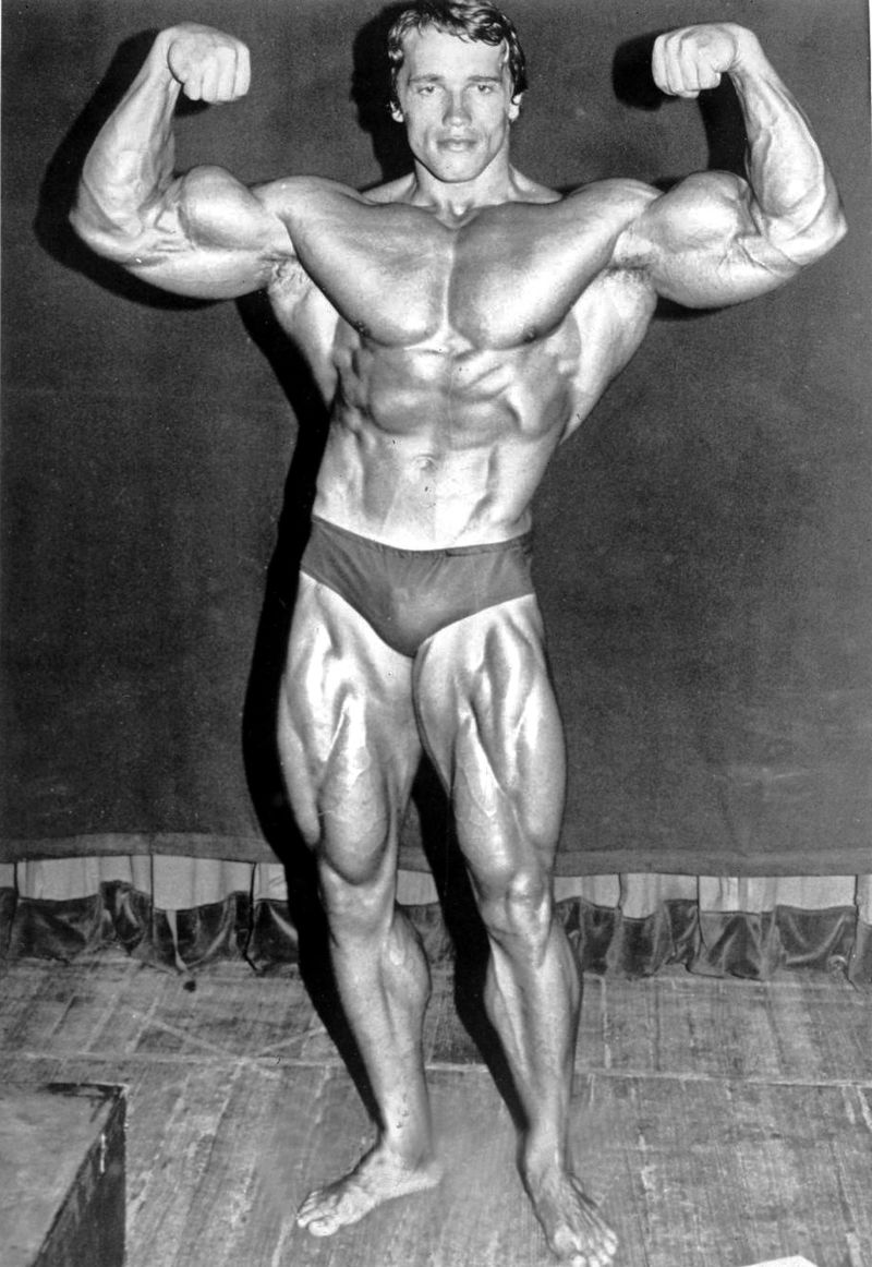Mister Universo, Mister Mundo, Mr Olympia, Arnold Schwarzenegger