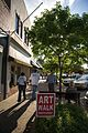 Arts Festival Art Walk (8724055582).jpg