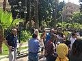 Association of lovers of trees walk at Al Maadi , photo by Hatem Moushir 3.jpg
