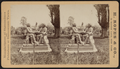 Auld Lang Syne, Central Park, from Robert N. Dennis collection of stereoscopic views.png
