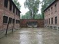 Auschwitz II-Birkenau 2.jpg