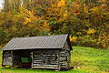Autumn-farm-buggy-tool-shed-pubJPG - West Virginia - ForestWander.jpg