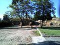 BA-R.A. - Ruinas Fuerte de Pardaleras 11.jpg
