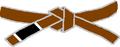 BJJ Brown Belt.PNG