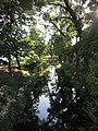Bački Petrovac - river 1.jpg