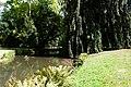 Bad Muskau - Park 25 ies.jpg