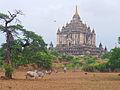 Bagan Myanmar (14923974197).jpg