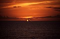 Bahamas 1988 (096) New Providence Sonnenuntergang (22905688114).jpg